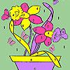Mariposas y flores para colorear de bote juego