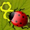Alimentación de Lady Bug juego