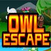 Escape de búho de bosque juego