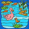 Familia del pato divertido en la coloración del lago juego