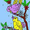 Dulce vecinas aves para colorear juego