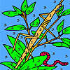 Worm and dragonfly coloring juego